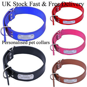 Pet-Dog-Cat-Collar-Personalised-Pet-Collar-with-Rein-Padded-Engraved-Name-amp-Number