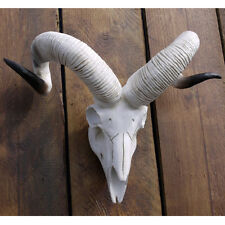 White/Ivory Animal Skull RAM Sheep Head Wall Mountable Resin Ornament Home Decor