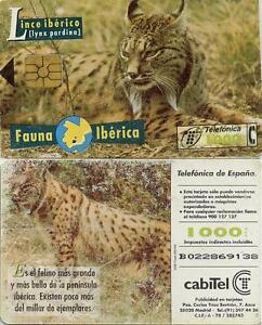 1000 PTA. Fauna Ibérica. Lince Ibérico. CabiTel.