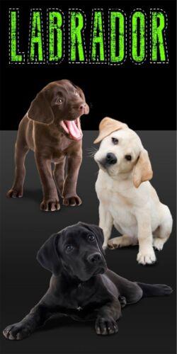 "Labrador Puppies Dogs Beach Bath Towel 30/"" x 60/""  Velour"