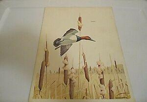 Vintage Menu THE TIDEWATER INN  Sunday Family Dinner Menu  Canvasback Duck