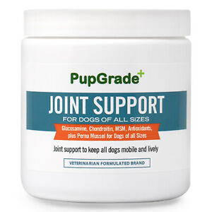 Glucosamine-Chondroitin-MSM-for-Dogs-Hip-and-Joint-Support-Supplement-Soft-Chews