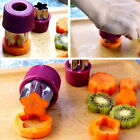 Steel Fruit Cutter Stainless Flower Shape Rice Vegetable Mold Slicer Set #P