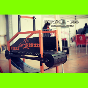Treadmill dog tapis roulant chiens jog exercice int rieur ebay - Tapis de course occasion ebay ...