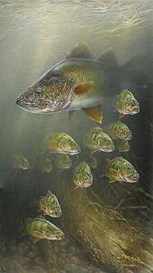 Plaque métal   poisson de rivière pèche    30 X 20 CM
