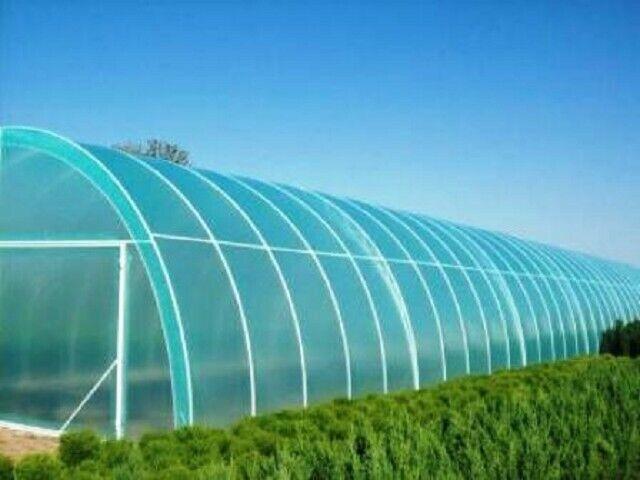 Polly túnel vitrocerámica Hoja Cubierta Lámina de efecto invernadero 8mx10m Membrana hortícola
