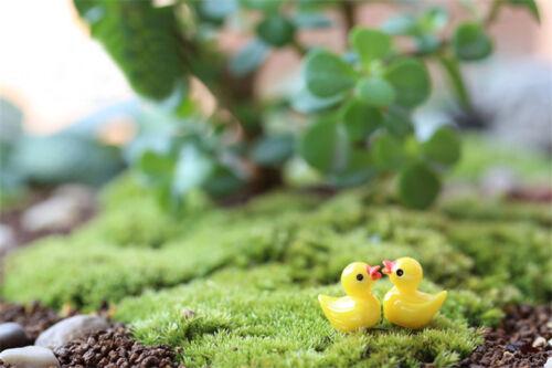 4Pcs Nette Gelbe Enten Miniatur Harz Handwerk Garten Terrarium Bonsai Dekoration