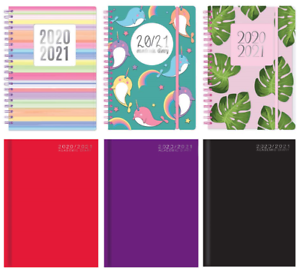 2020 2021 A5 Size Academic Mid Year Week to View Student Teacher Diary #16