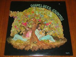 GOSPEL-SEED-GROWING-1977-RARE-STILL-SEALED-LP