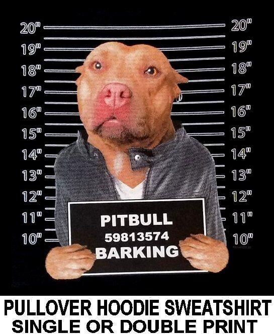 PITBULL MUG SHOT FUNNY NAUGHTY BAD DOG ART PULLOVER HOODIE SWEATSHIRT WS765