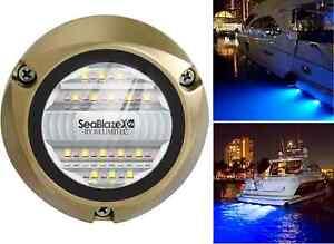 Bronze White//Blue SeaBlaze X2 Underwater Light