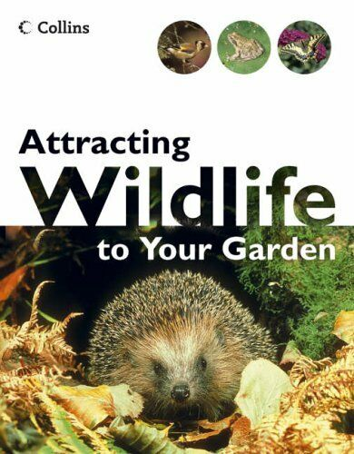 Attracting Wildlife To Your Garden,Michael Chinery
