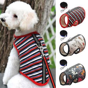 Soft Stripe Pattern Dog Harness And Leash Cute Dogs Or Cats Print