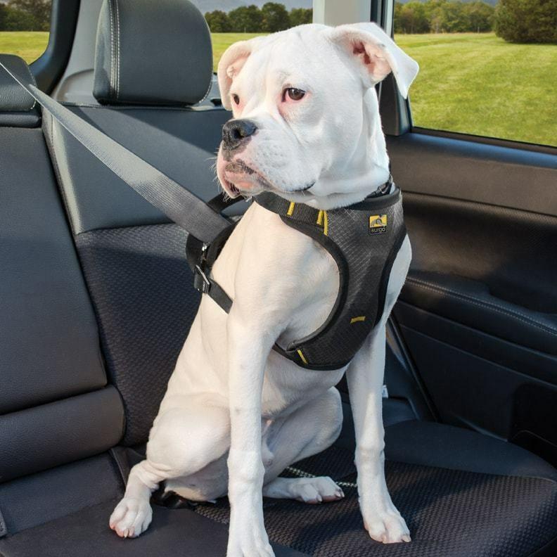 Kurgo Impact Crash Tested Car Dog Puppy Seatbelt Harness Strong Adjustable
