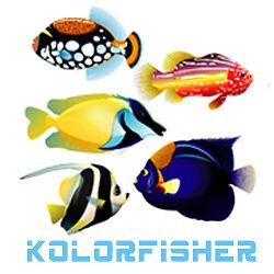 kolorfisher