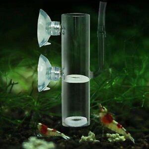 Details about Aquarium Egg Incubator Hatch Crystal Shrimp Fish Tank  Transparent Glass Supplies
