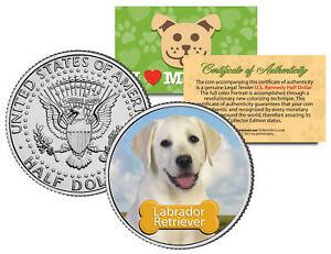 LABRADOR-RETRIEVER-Dog-JFK-Kennedy-Half-Dollar-Colorized-Coin-Limited-Edition