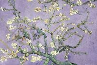 Vincent Van Gogh Purple Blossoms 24x36 Fine Art Poster Tree Flowers New/rolled