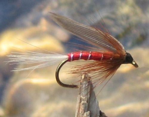 6 Stück von einer Größe Nassfliegen Red Tag GILCHRIST FLIEGEN