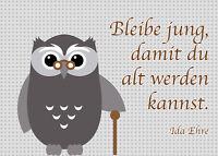 2 Postkarten Eulen Grußkarte Alte Eule Bleibe Jung Geburtstag Oma Opa Eltern Owl