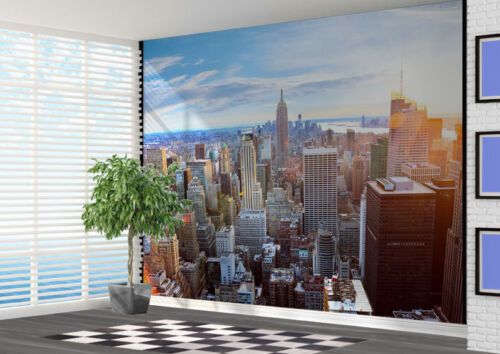 21788063 New York Sunlit view of New York Skyline wall mural photo