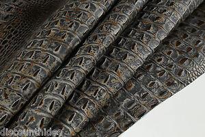 Titan CROC Leather cowhide remnant Appx 3 sqft K26D2-5