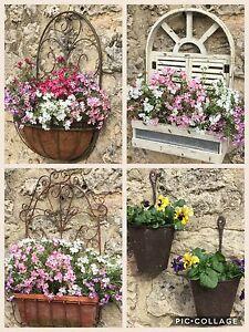 Antique-style-chic-mur-plant-pot-conteneurs-boite-de-fenetre-shabby-vintage-cottage