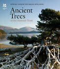 Ancient Trees of the National Trust by Edward Parker, Brian Muelaner (Hardback, 2016)