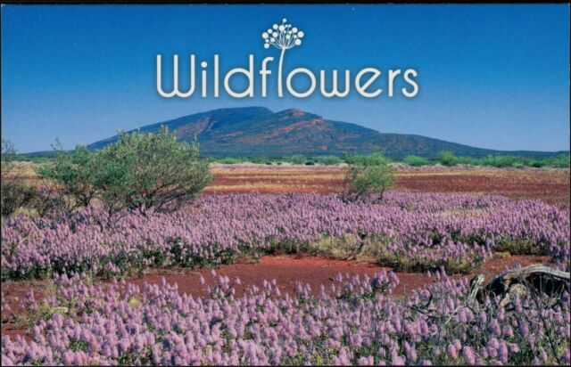 2015 AUSTRALIA Australian Wildflowers Stamp Pack MNH