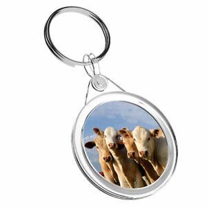 1 X Superbe Vache Animal De Ferme Verre Coaster-cuisine étudiant Qualité Cadeau #8249