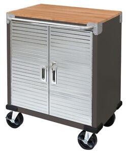 Seville 2 Door Rolling Cabinet Storage Tool Box Cart