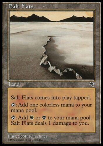 rare alemán german sl * Mtg 1x Salt Flats-Tempest