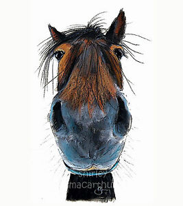 HAPPY-HORSE-PRINTS-of-Original-Painting-HAPPY-HARRY-by-SHIRLEY-MACARTHUR