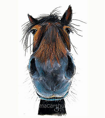 SHIRLEY MACARTHUR PRINT/BOX CANVAS IN 3 SIZES HAPPY HORSE PAINTINGS 'HAPPY HARRY