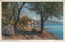 55693 -- CARTOLINA d'Epoca - SVIZZERA  Ticino :  BRISSAGO