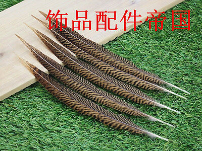 Wholesale, 10-100pcs beautiful natural golden pheasant tail feathers 15-20 cm