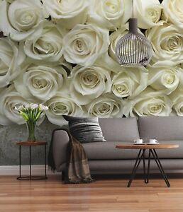 Murales Per Interni Casa.Carta Da Parati Per Interni Casa Muri Gigante Foto Murale Bianco