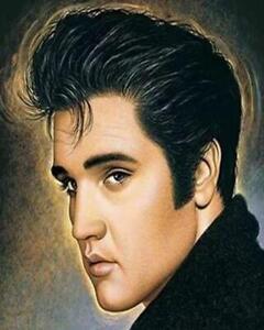 - Van-Go Paint-By-Number Kit 21 N118 Elvis Presley the King of Rock /'n/' Roll