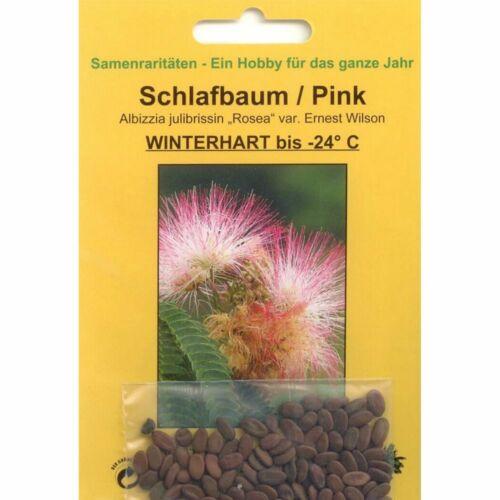 50 Graines de schlafbaum pink Bonsai 90067 Albizzia julibrissin /'rosea/'