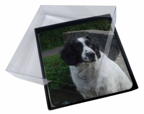 4x Black and White Springer Spaniel Picture Table Coasters Set in Gift , ADSS4C