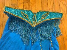 Blue with Gold Accents Professional Bellydance Costume: Bra, Belt, Skirt Set