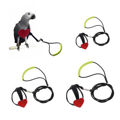 ara per pappagalli paracaduti per acatoo corda volante Pettorina per uccelli e guinzaglio a prova di fuga pappagallo grigio africano ASOCEA