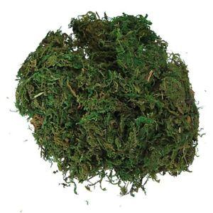 Green-Artificial-Reindeer-Moss-For-Lining-Plant-Flower-Garland-Decor-G1K4