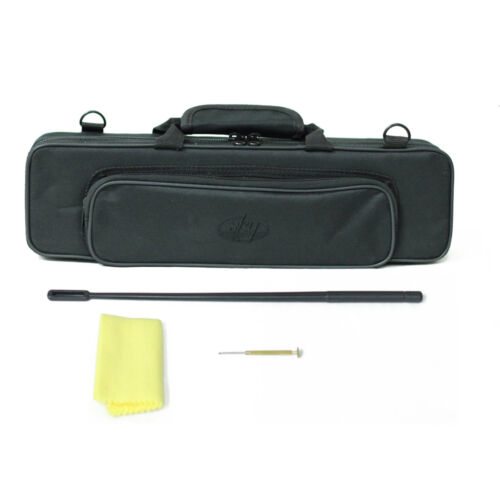 "SKY Band Approved /""Sky/"" OPEN HOLE Nickel Flute w Case *Special*"