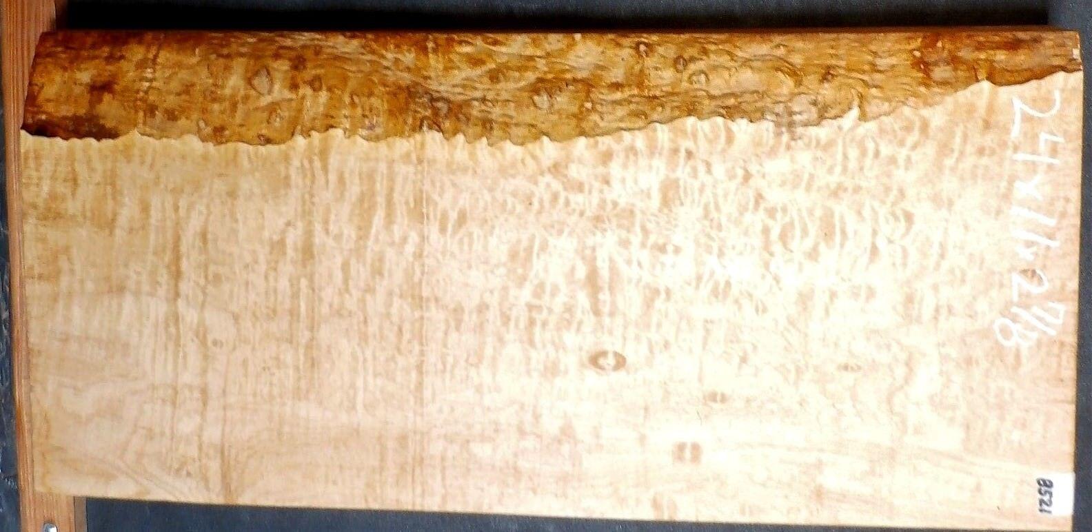 Gesteppt Ahorn Instrument Holz Gitarrenbauer 5a Ausstellung Qualität 24x