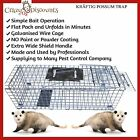 3 TRAP HUMANE POSSUM CAGE LIVE ANIMAL CATCH FERAL CAT RABBIT HARE BIRD BAIT RAT