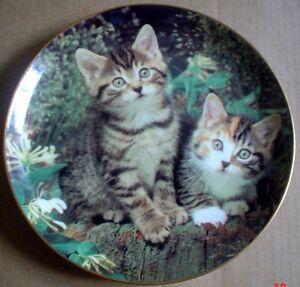 Danbury-Mint-Collectors-Plate-MITTEN-AND-MISCHIEF-Kitten-Cat