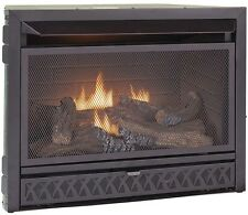 29 in. Propane Natural Gas Fireplace Insert Dual Fuel Vent-Free Thermostat ODS