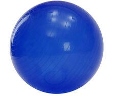 Yoga Ball with Pump - 65 cm