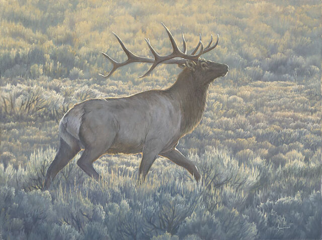 """Morning Run"" Aaron Yount Limited Edition Giclee Canvas"